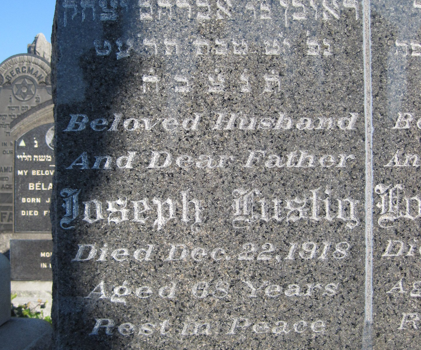 Lustig Archives - Cousinist: Family Tree and Genealogy