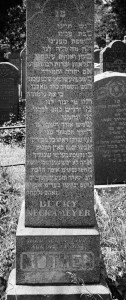 Becky Kashowitz Neckameyer